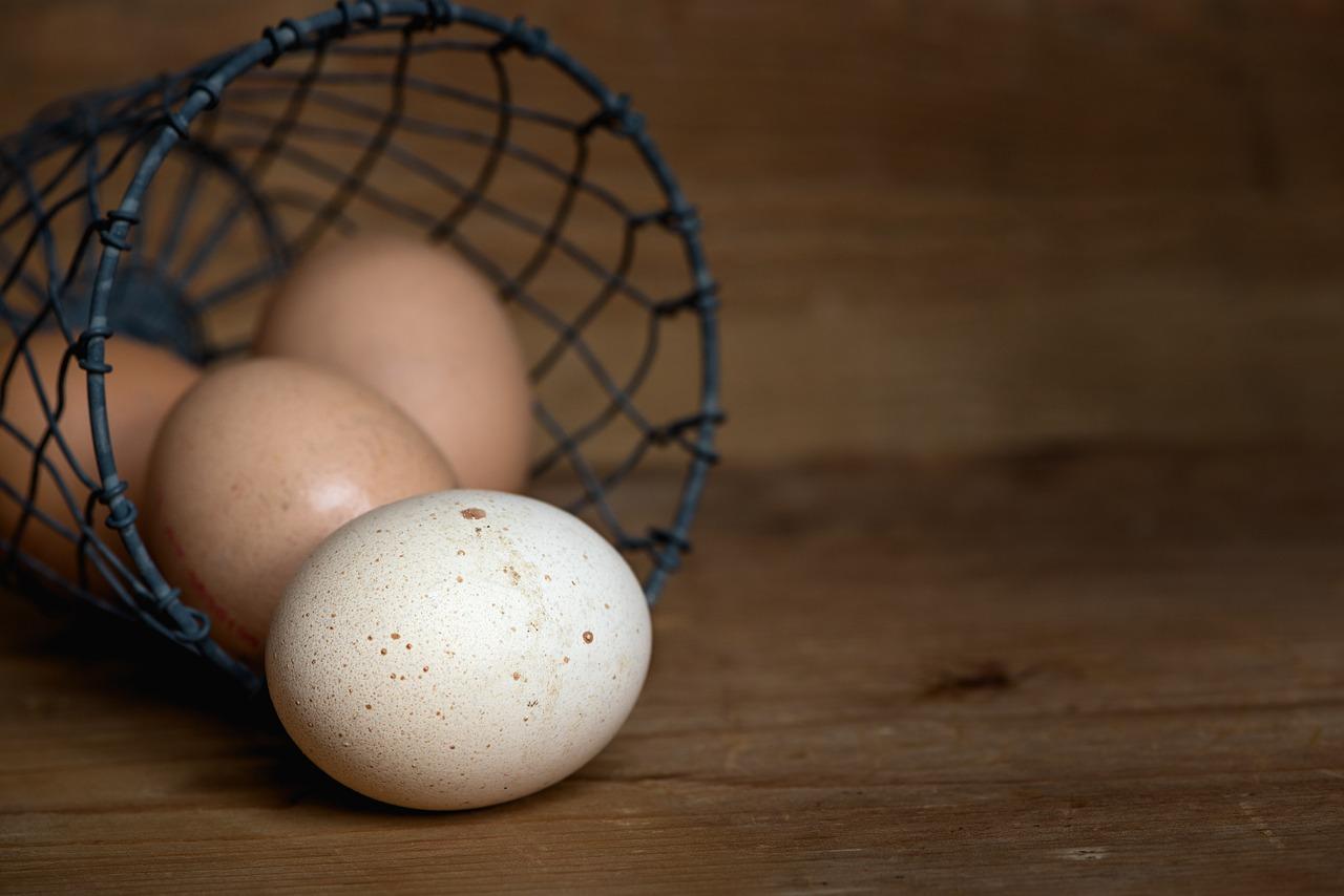 Het witte of het bruine ei
